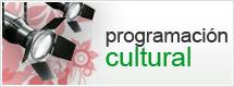 Cultura Programacion
