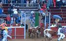 Encierro San Antonio 2007 (II)