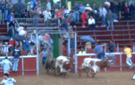 Encierro San Antonio 2007 (III)