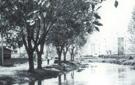 Sitio: Río Guadarrama / Situación actual: Actual canalizado / Cesión: Archivo de la Casa de Cultura