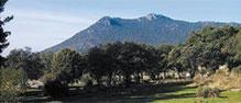 Sierra Hoyo de Manzanares