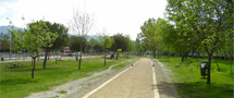 Acceso a parques forestales