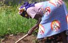 Una agricultura muy primitiva es el principal medio de subsistencia en el país